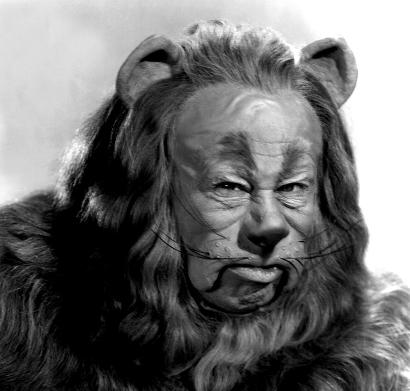 152682-the_wizard_of_oz_cowardly_lionreduced